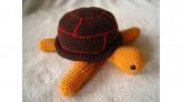 großeSchildkröte