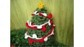 schönerWeihnachtsbaum